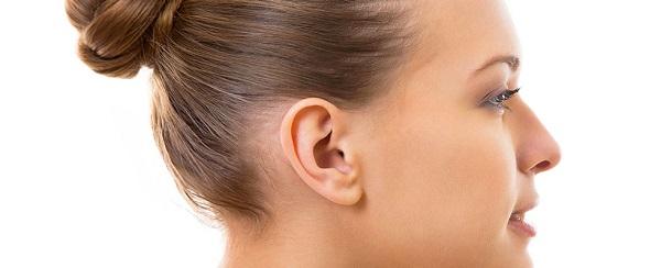 Kulak Kepçesi